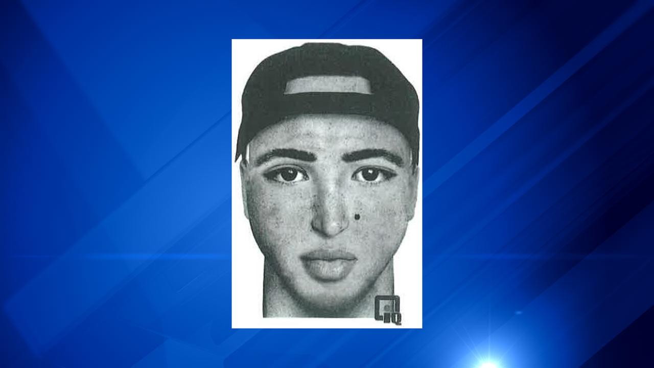Oak Lawn suspect sketch