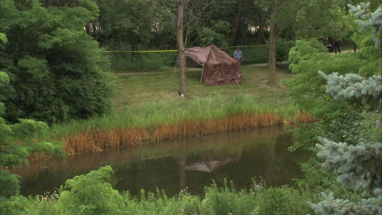 Body found in Downers Grove pond ID'd