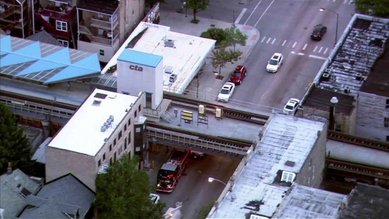 Pedestrian struck by car under CTA Pink Line tracks