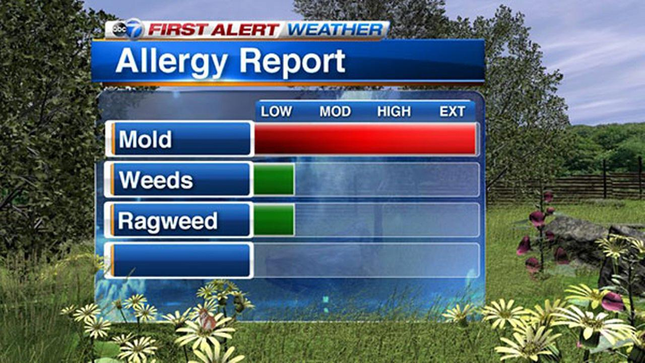 Chicago weather: Highest mold count of the year triggers Dangerous Air Quality Alert