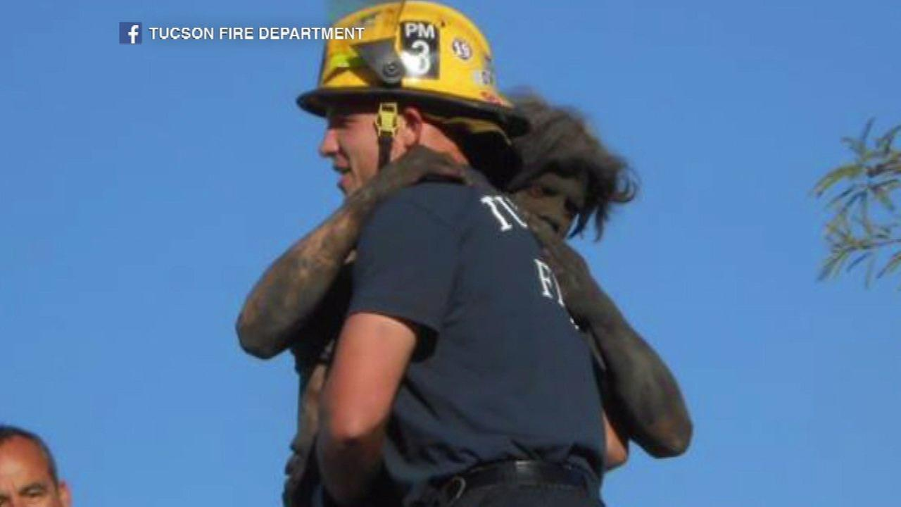 Firefighters rescue man stuck in chimney