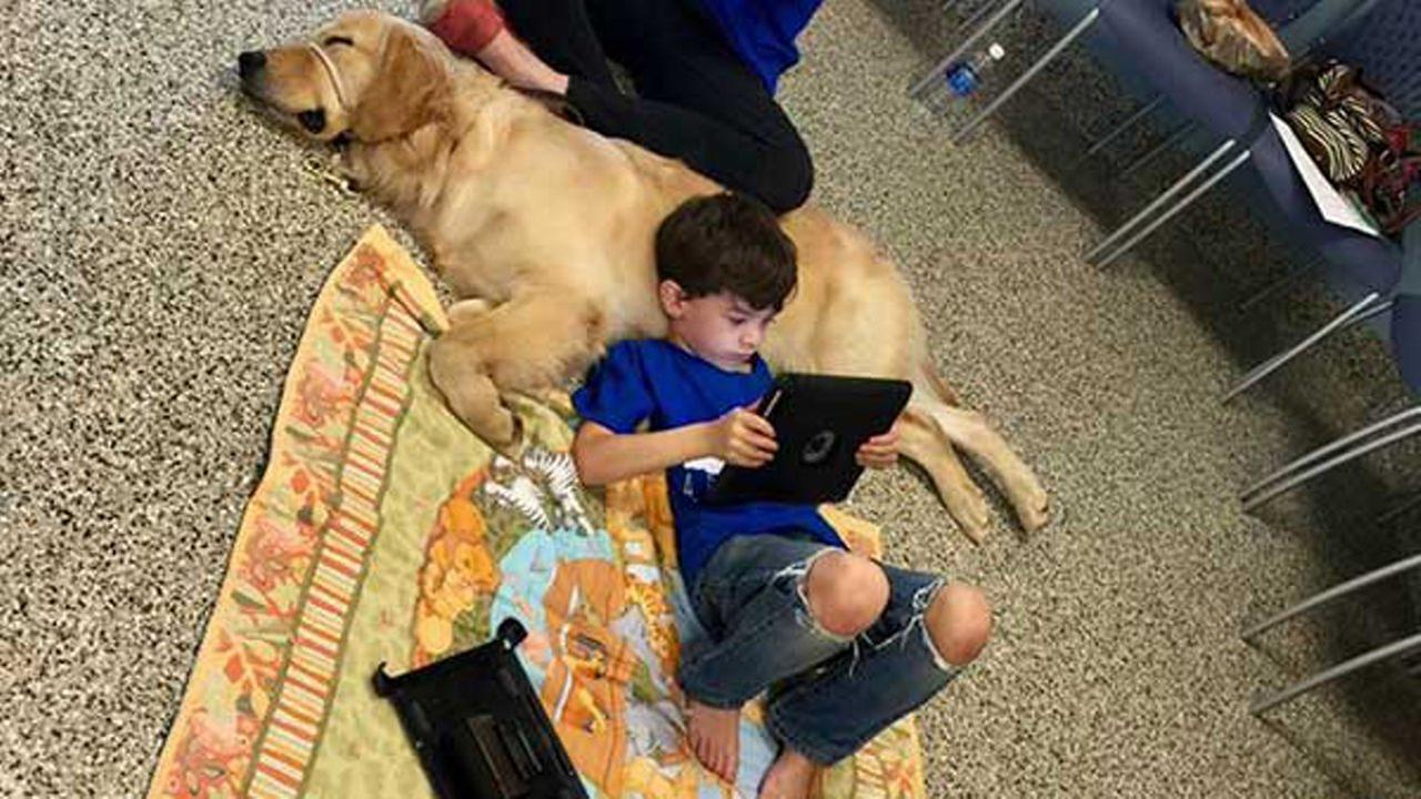 Kai, a 5-year-old boy with autism, met his new autism assistance dog on Monday.