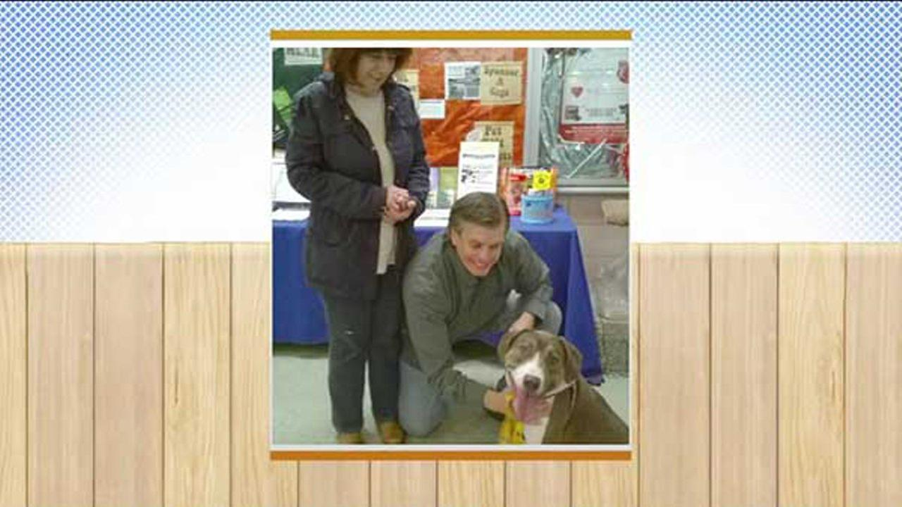 Good Morning America reported Monday that the canine Anthony Rizzo has been adopted from the Animal Welfare League in Chicago Heights.