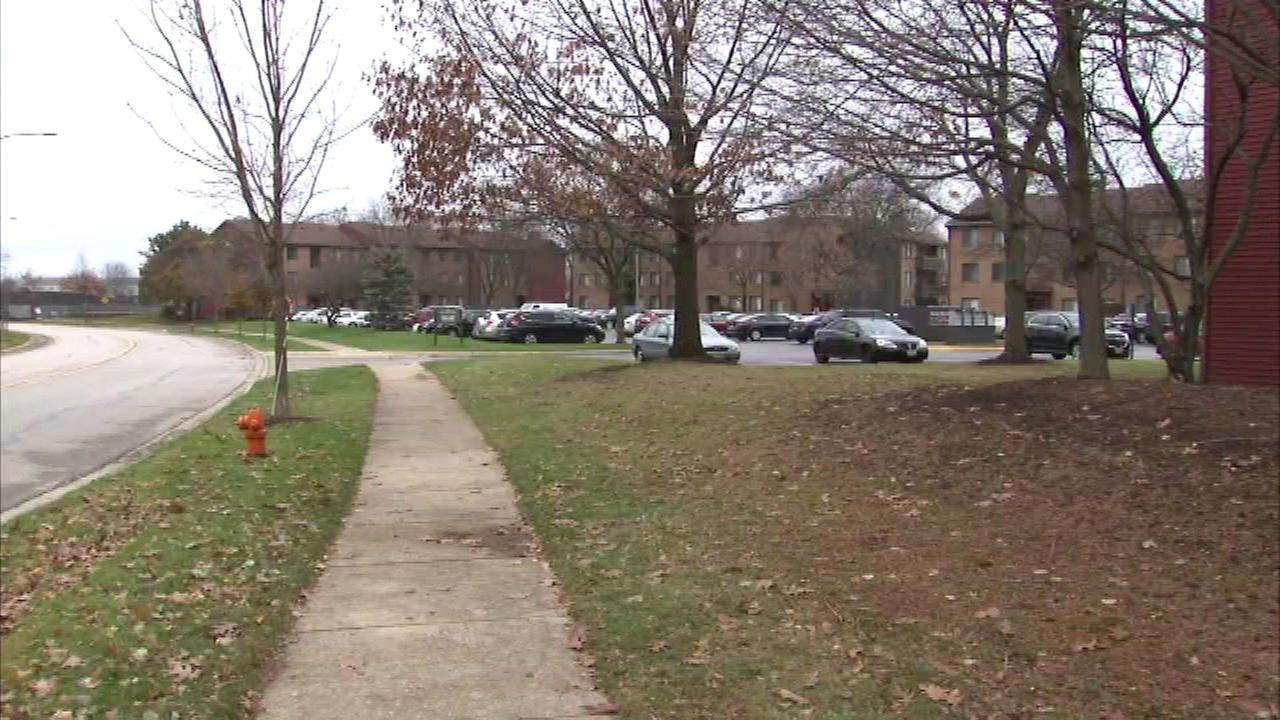 Naperville Police said the shooting took place in the 1400-block of Fairway Drive.