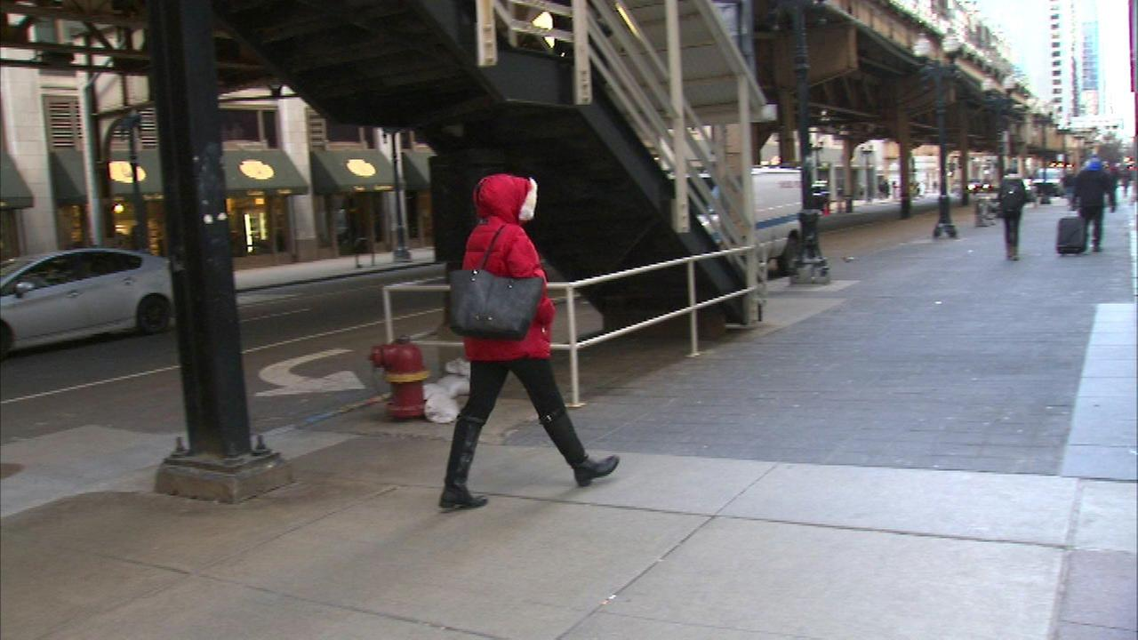 Police: Man picking pockets in the Loop