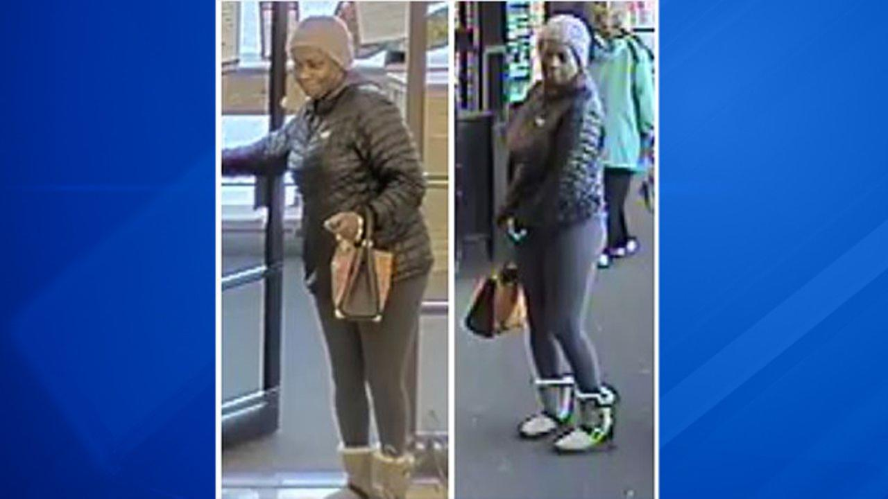 Police searching for woman suspected in check fraud ring