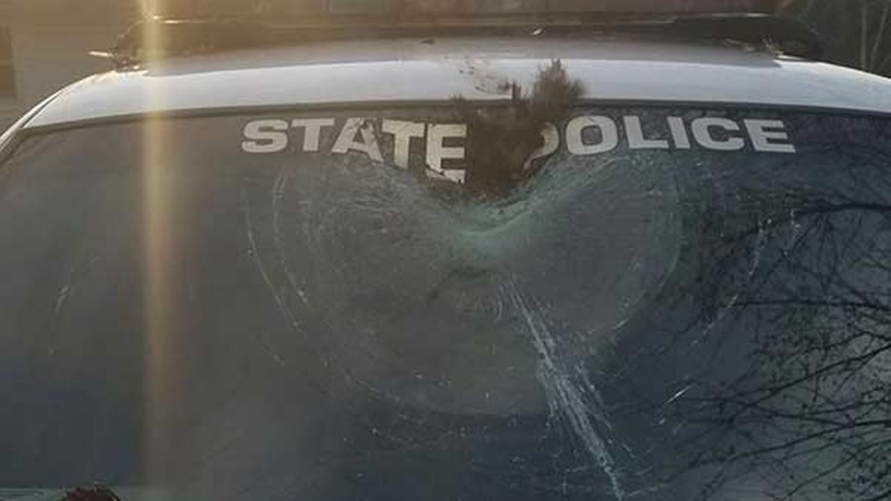 Wild turkey flies through windshield in Indiana for 2nd time in 2 days