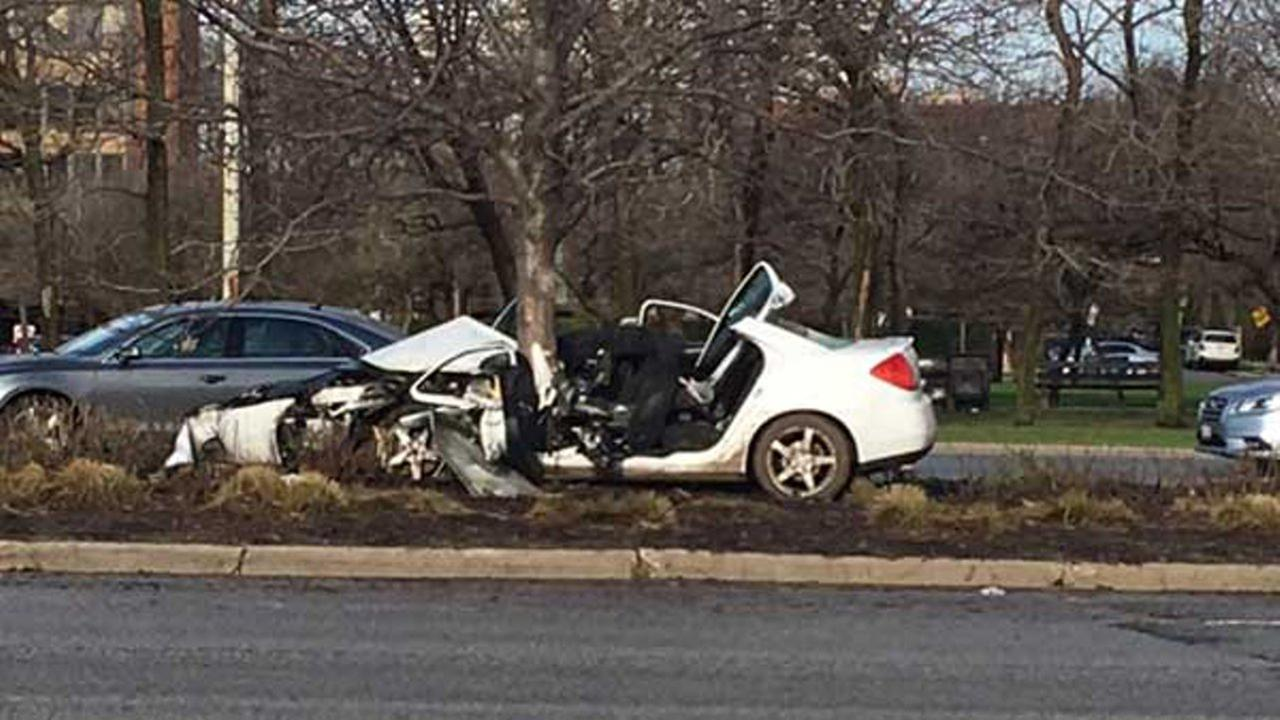 Man critically injured in Lake Shore Drive crash where car hit tree