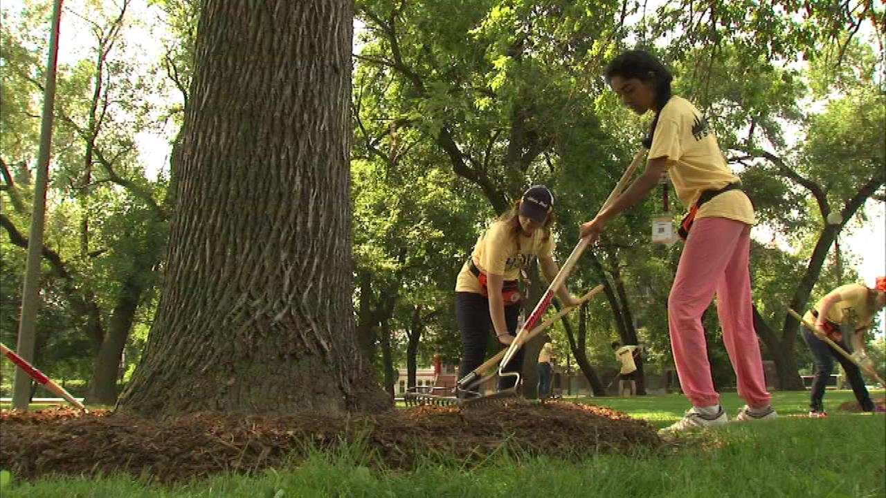 Four hundred high school students from across the world came together Tuesday to transform Humboldt Park on Chicagos West Side.