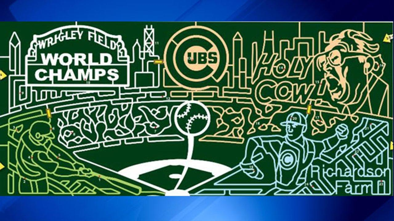 Corn maze to honor Cubs' World Series win