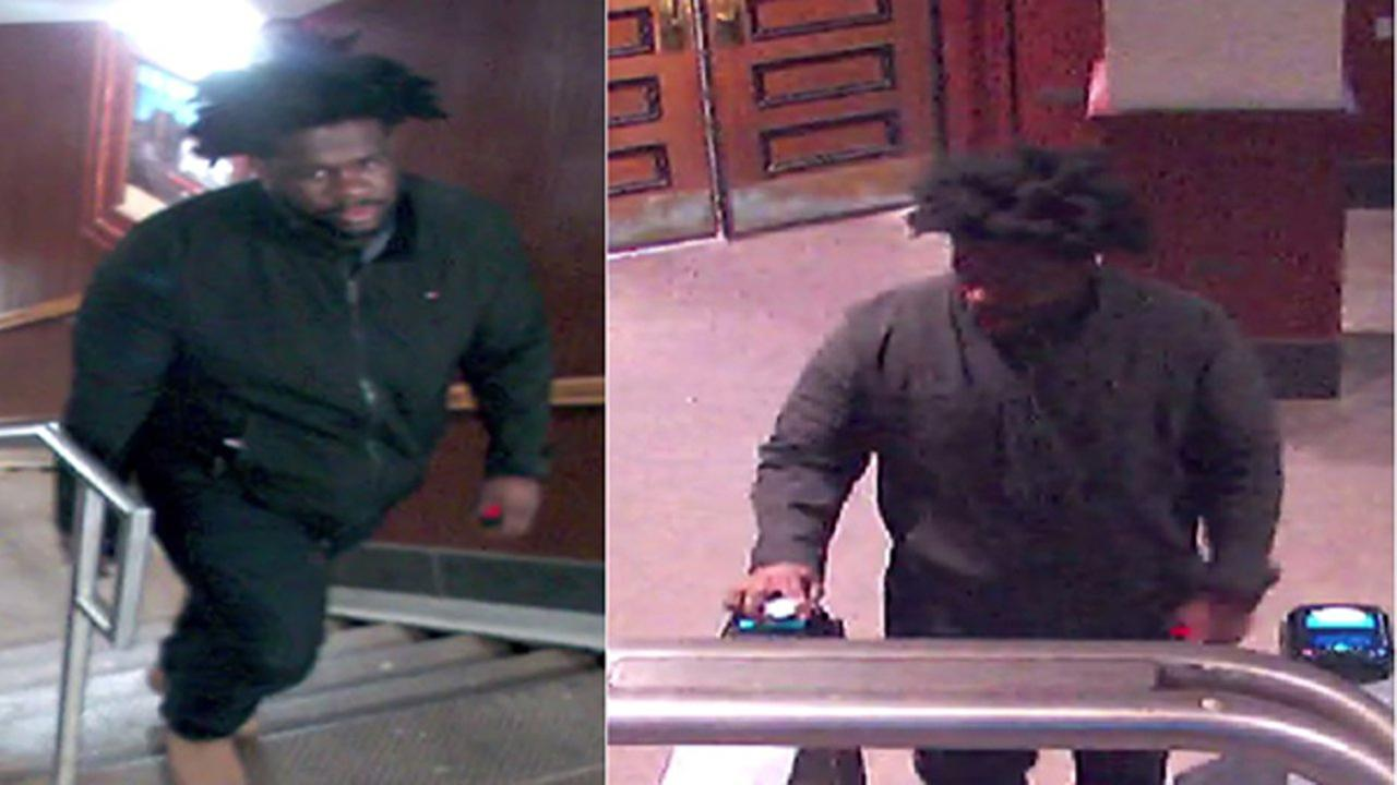 Police: Woman followed from Wicker Park CTA stop, attacked, robbed