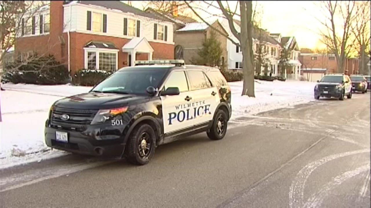Police: Daughter stabs mother in Wilmette