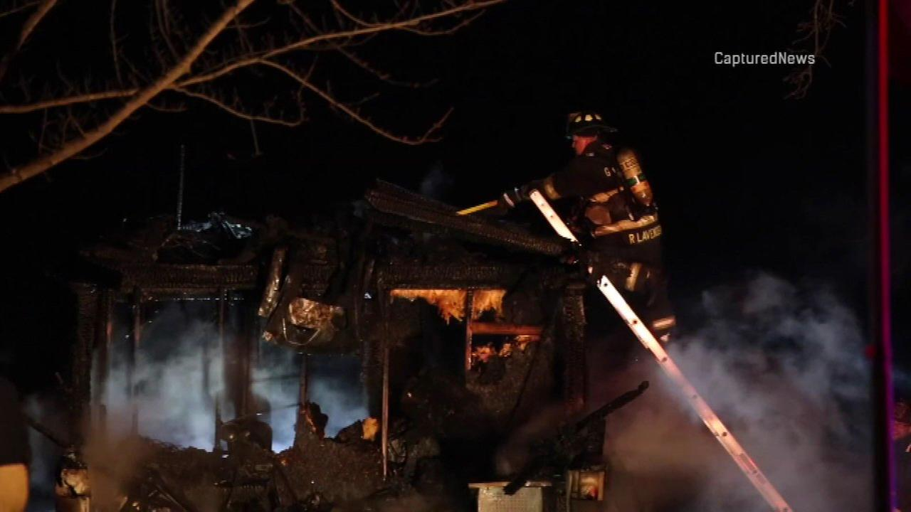 Thirteen dogs were killed in a fire in Hampshire Saturday night.