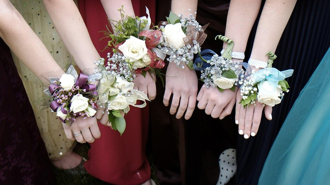 Girls with Corsage Flowers at Prom