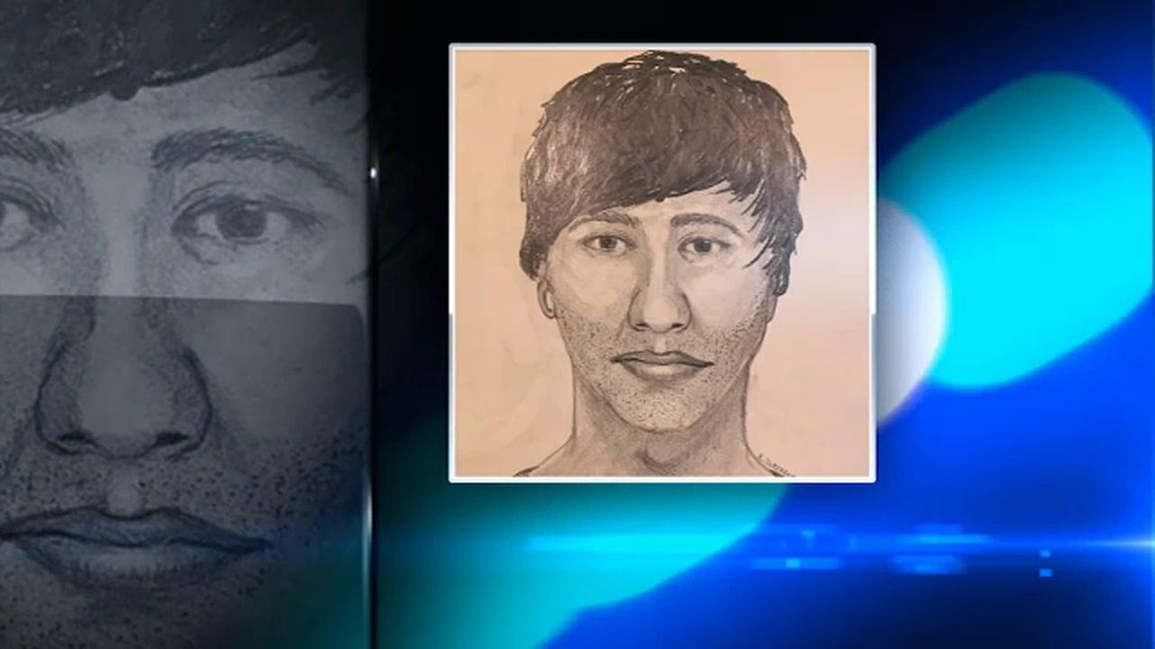 Geneva police sketch of suspect attempted robbery, attack