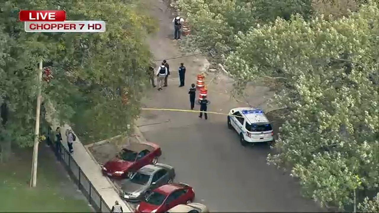 CPD officer's squad car hit by vehicle in Albany Park, shots fired