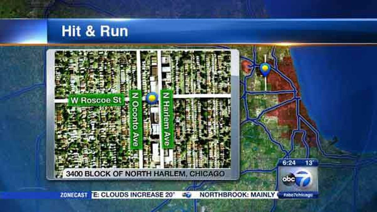 Police search for car, driver involved in Belmont Heights hit-and-run crash