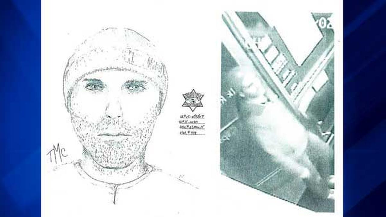Sketch and surveillance photo of suspect in Tinley Park hair salon armed robbery.