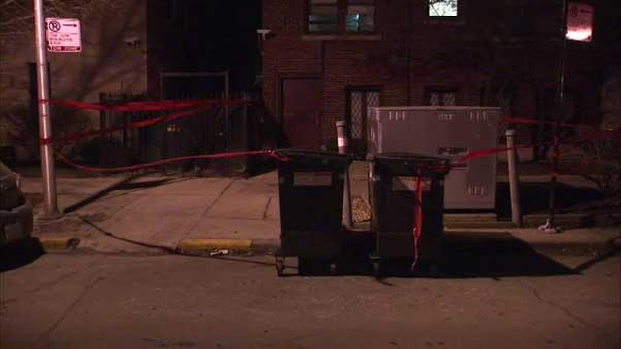Rat gets into transformer, takes down power in Lakeview