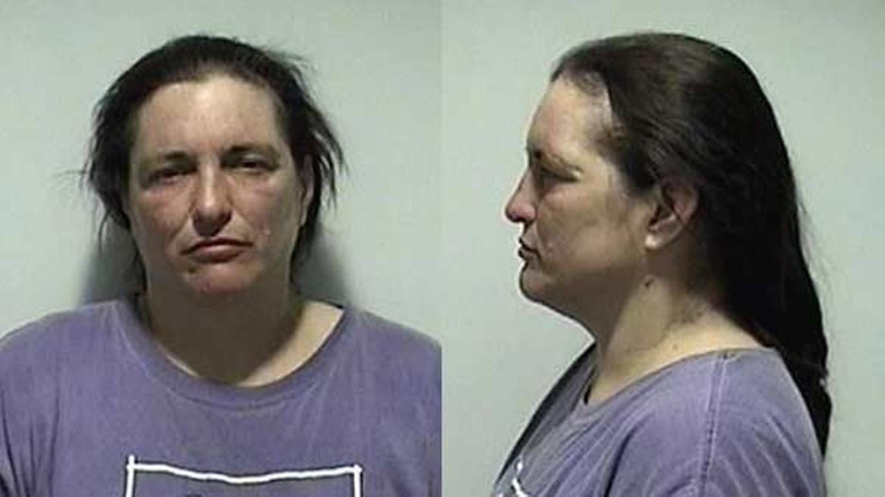 Batavia woman charged after 3 dogs die