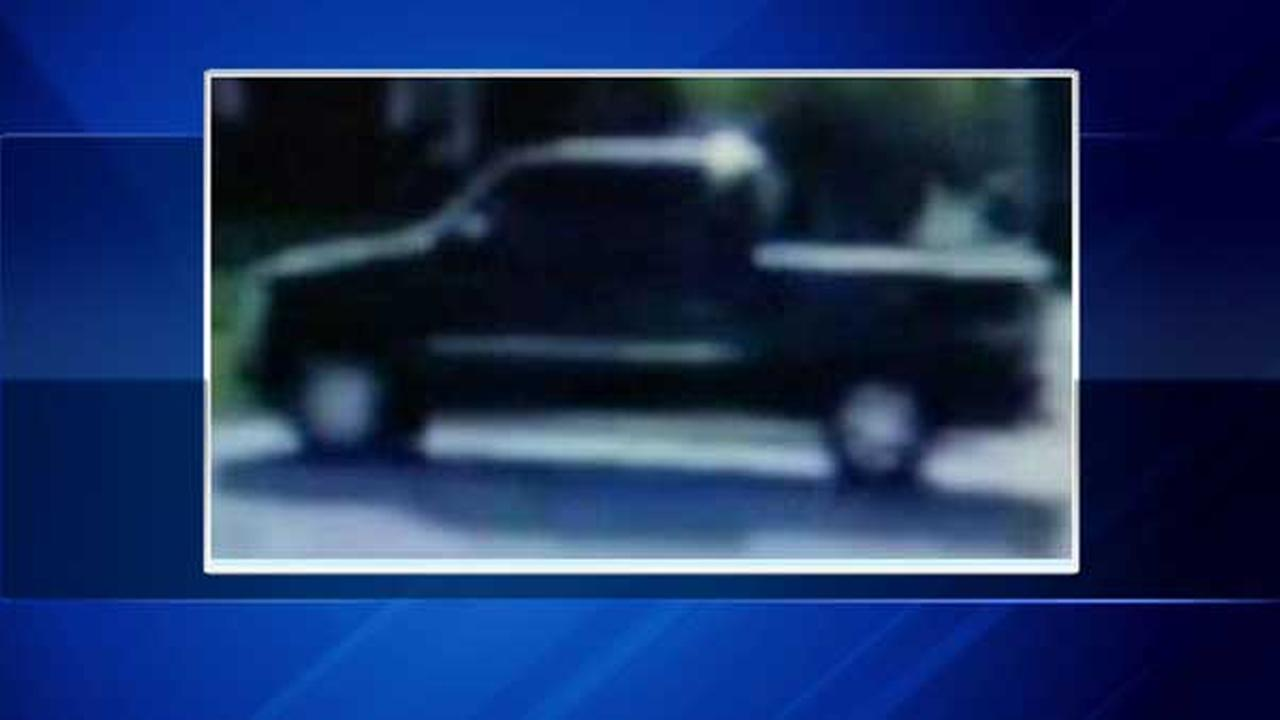 Schaumburg police released a private surveillance photo of a truck that may be involved in a child luring attempt near a park in the northwest suburb.