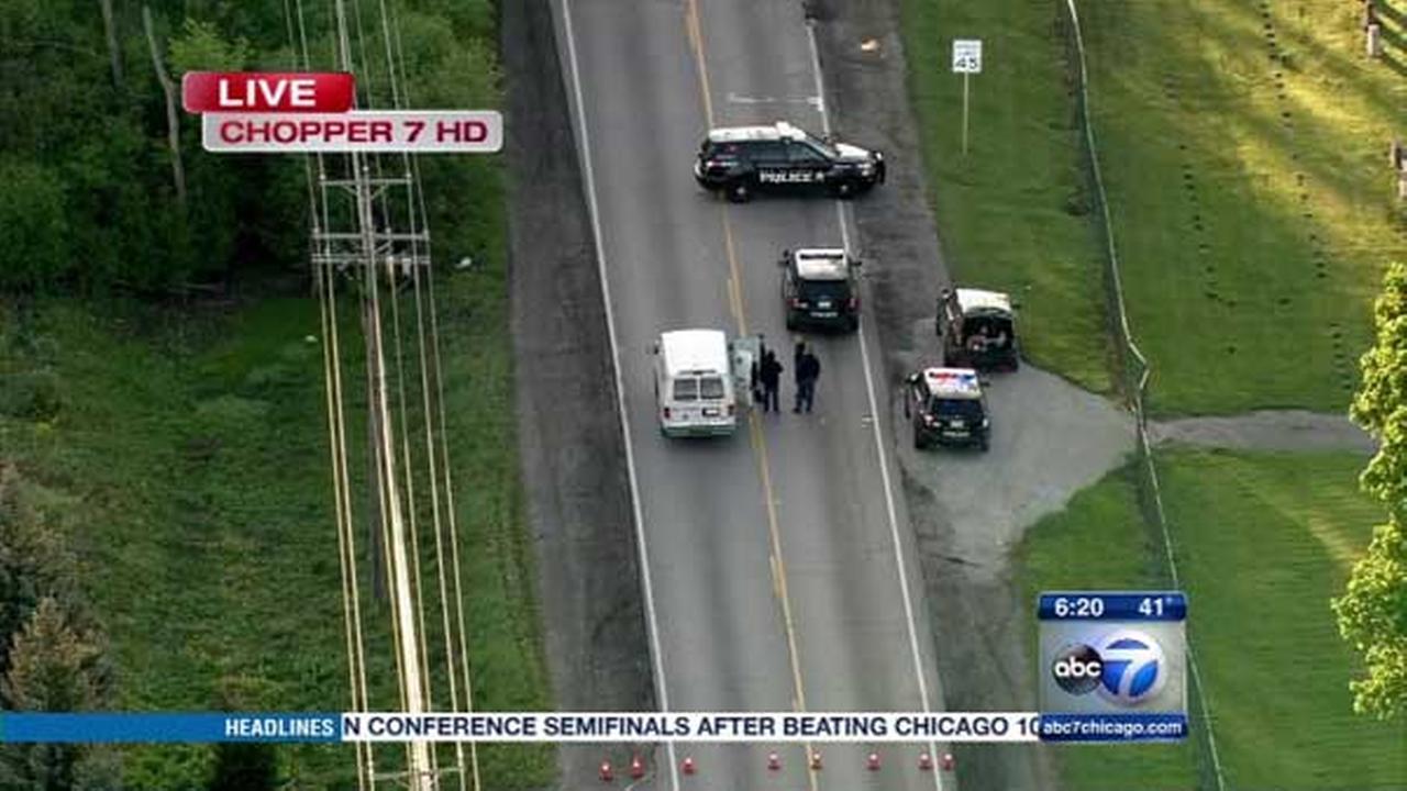 Pedestrian struck in Des Plaines
