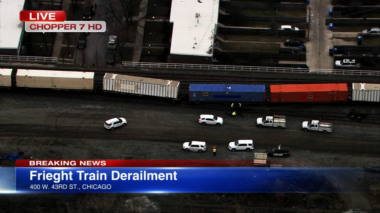 A freight train derailed Friday afternoon in the citys Bridgeport neighborhood, according to Metra officials.