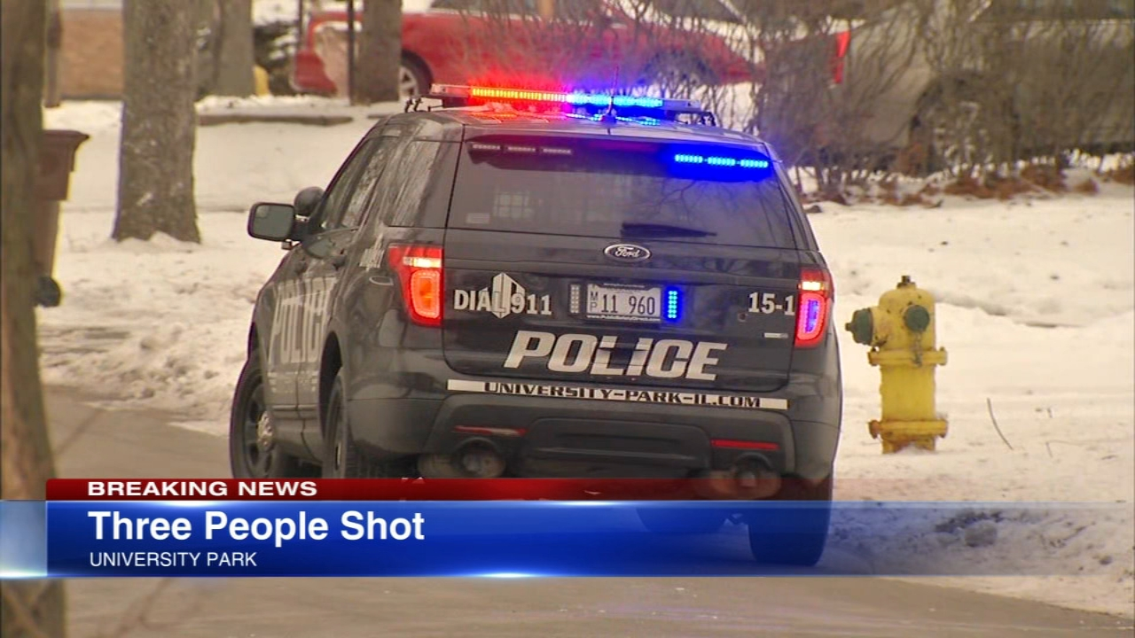 Police in south suburban University Park said three people were shot at a home Tuesday afternoon.