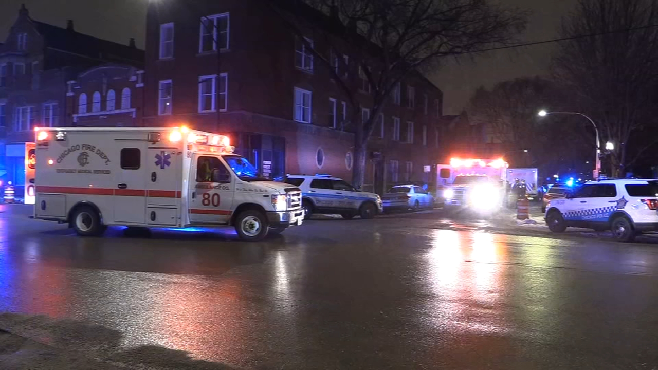Two Chicago police officers were injured while responding to a domestic disturbance call in the Little Village neighborhood Wednesday morning.
