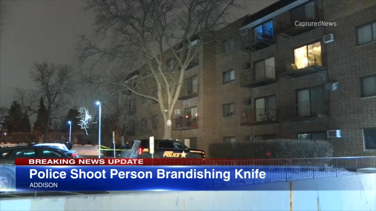 A person who police said was brandishing a knife was shot by an Addison police officer Thursday morning, police said.