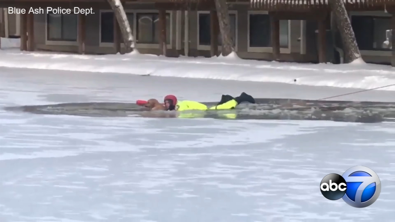 First responders in Ohio braved frigid conditions to rescue a pup that fell through the ice near Cincinnati.