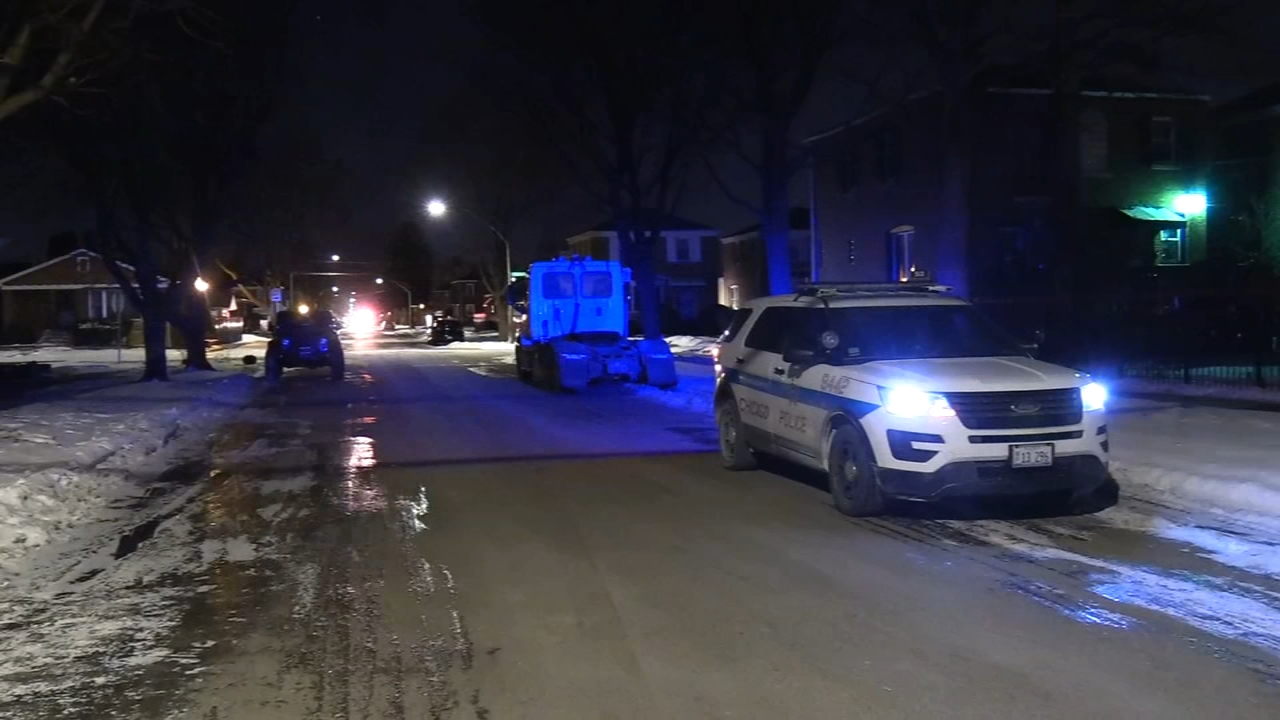 A woman was found shot to death in an alley in Chicago's Pullman neighborhood Friday morning.