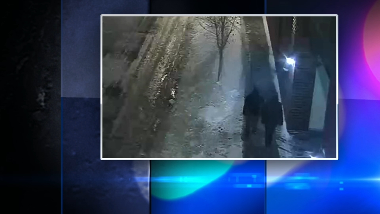 Surveillance video captured potential persons of interest in the attack on Empire actor Jussie Smollett , Chicago police said Wednesday afternoon.