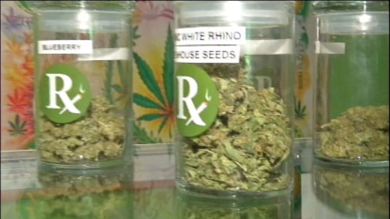 A new Illinois law allows patients to choose medical marijuana over opioids with a doctors permission.