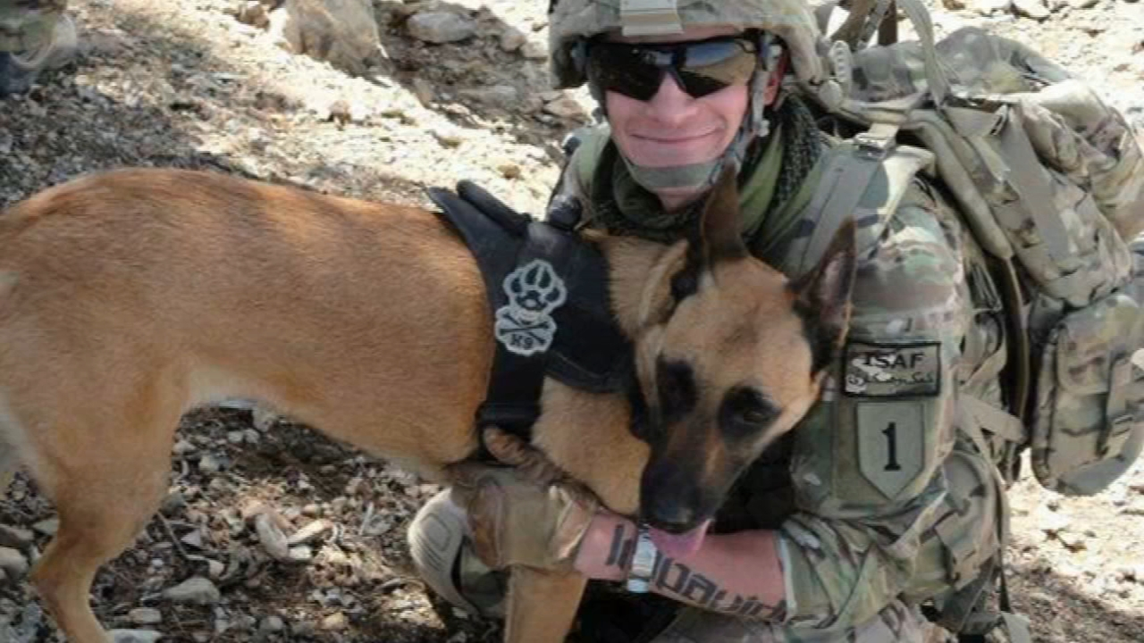 An Indiana veteran recently adopted the bomb-sniffing dog he served with in Afghanistan, and he says the retired canine is settling in to a pampered life.