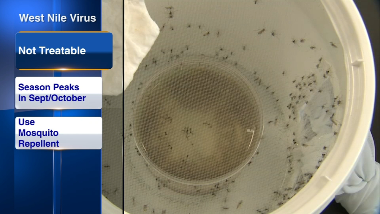 West Nile virus has been worse this year than in recent seasons, and its infectious period hasnt peaked yet. Dr. Robert Ctironberg with Advocate Health Care stopped by ABC7 Eyewit