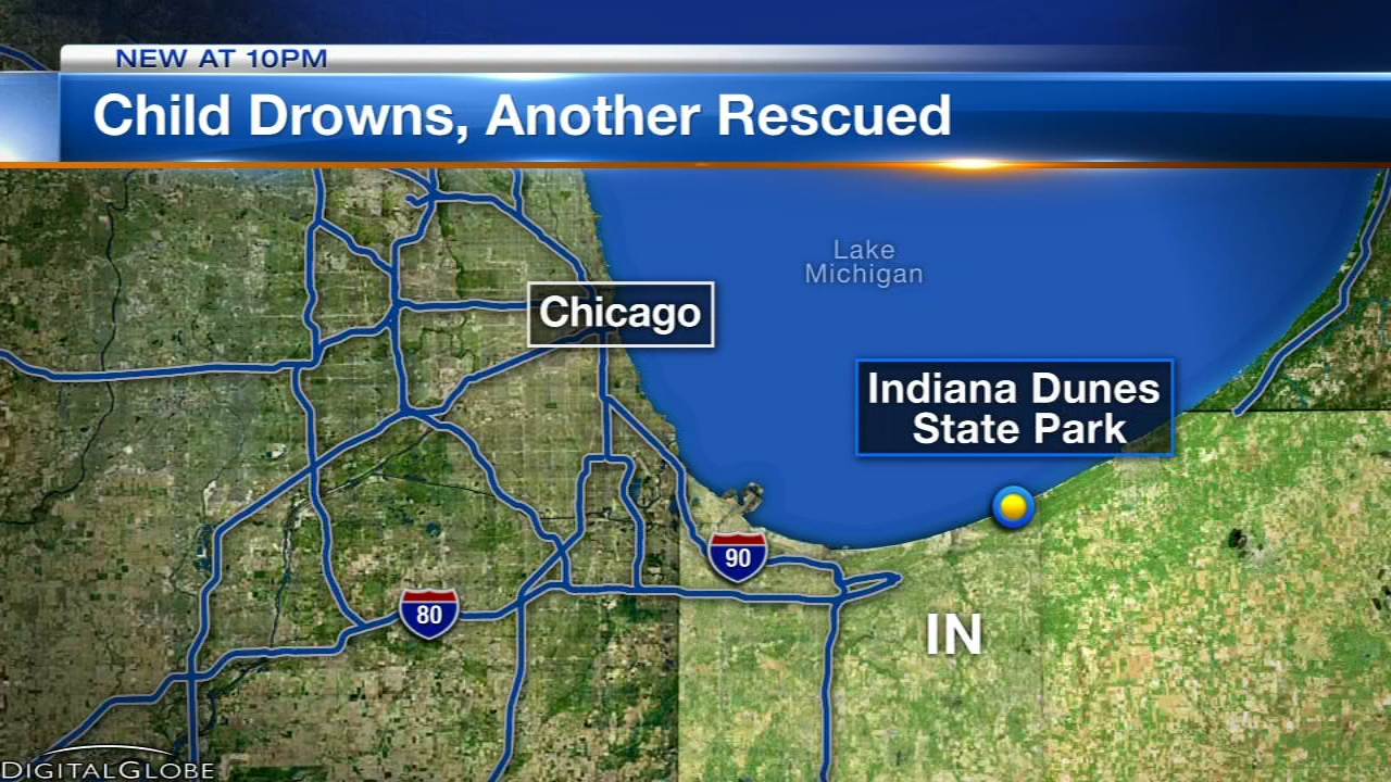 Two Chicago boys were pulled from Lake Michigan at Indiana Dunes State Park. One died and another was in critical condition.