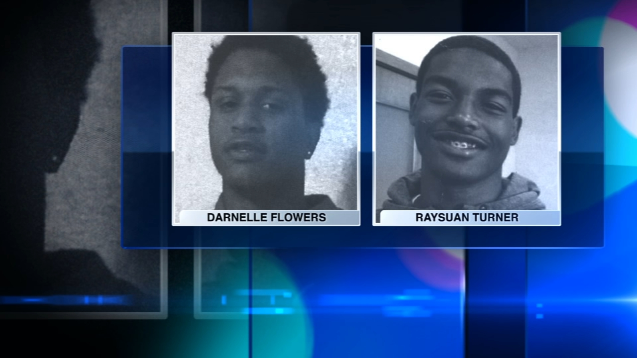 Two teenagers were found shot to death Sunday night in a field on the Far South Side, Chicago police said.