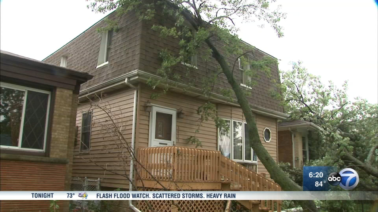 A microburst downed trees on Chicagos Northwest Side.