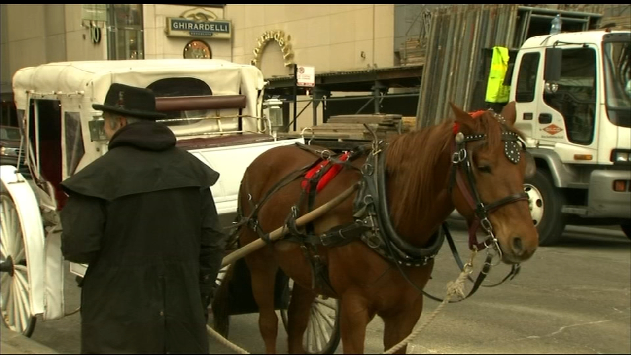A City Council committee meeting Wednesday could be the first step toward a ban on horse-drawn carriages.