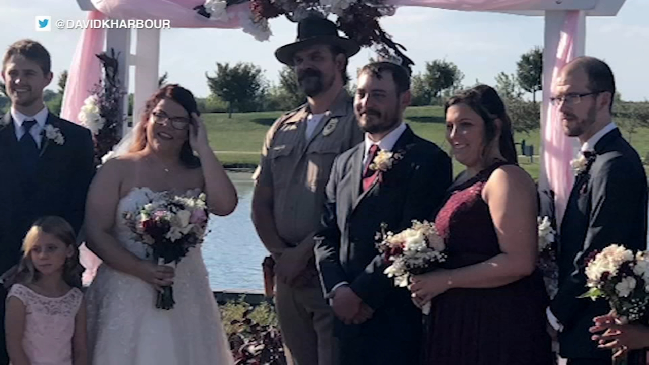 Actor David Harbour made good on a promise to officiate a fan's wedding in Illinois this past weekend after she met his Twitter challenge.
