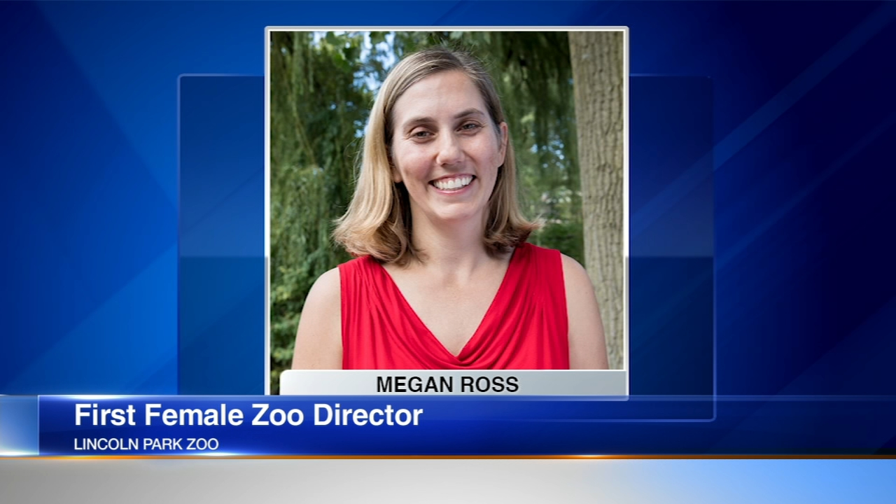 Lincoln Park Zoo named its first female director Thursday.