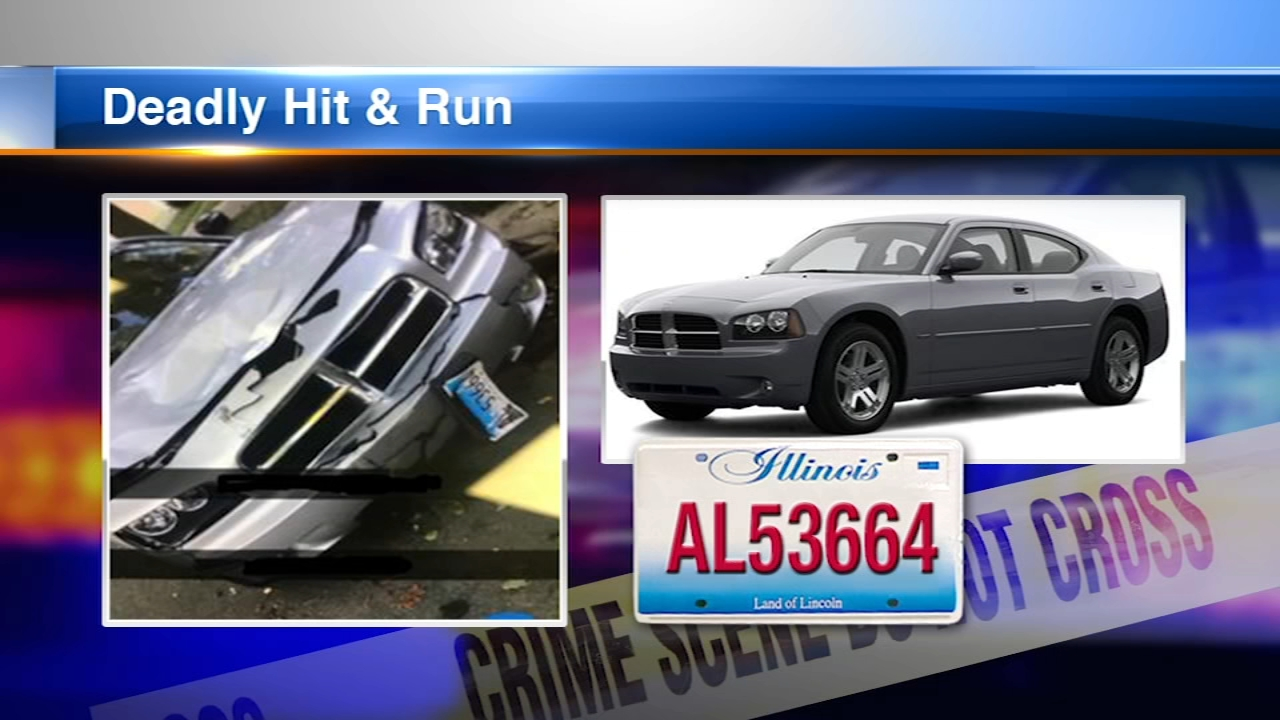 Chicago police have released a picture of the car that they are looking for in a fatal hit-and-run crash on the North Side Sunday.