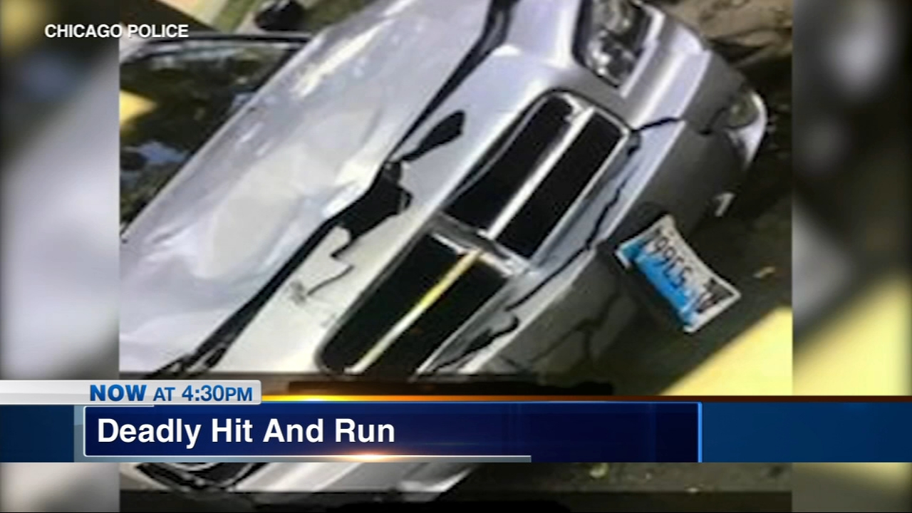 Police have released surveillance images of the car that was involved in a deadly hit and run.