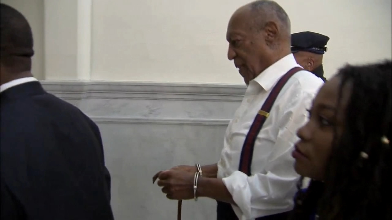 Famous TV dad Bill Cosby received a sentence of three to ten years in  prison, for one sex assault case. There are about 60 others including three in Chicago.