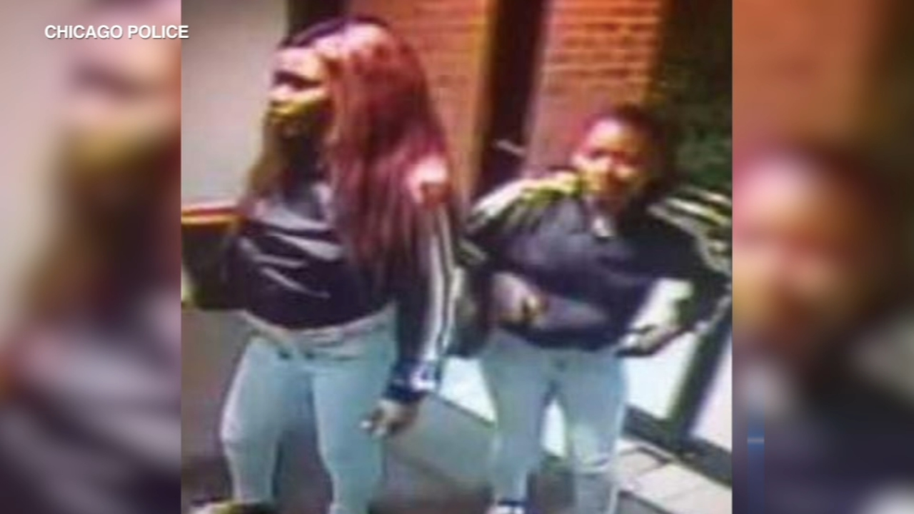 Chicago police have released a surveillance image of two women they say pepper-sprayed a senior citizen in an attempted robbery in the South Loop last month.