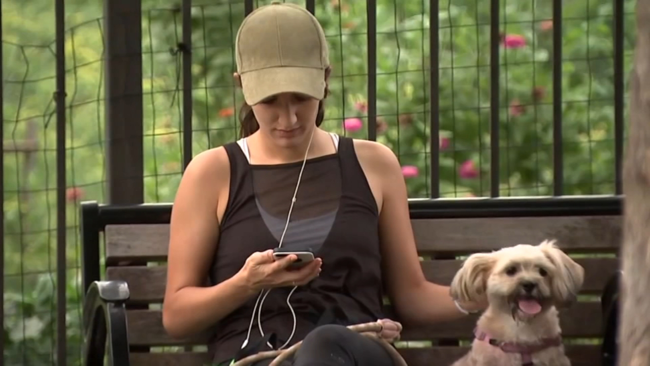 A new study suggests dogs may get depressed when their owners overuse smartphones.