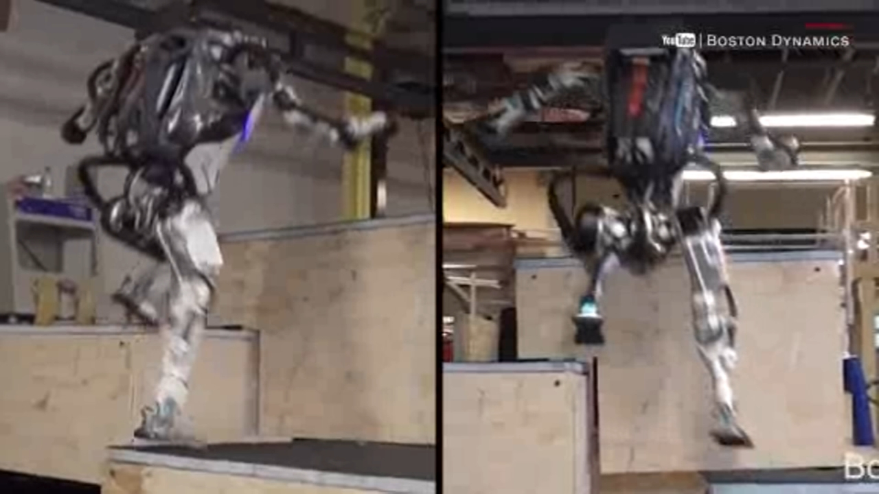 An escaped snake sets off a security alarm and a nimble robot pulls off some parkour moves.