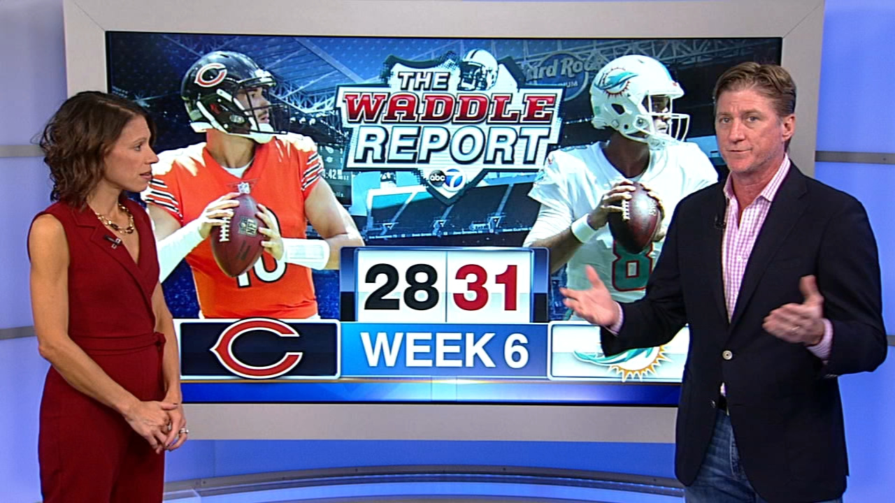 Waddles World: Bears lose to Dolphins, 31-28