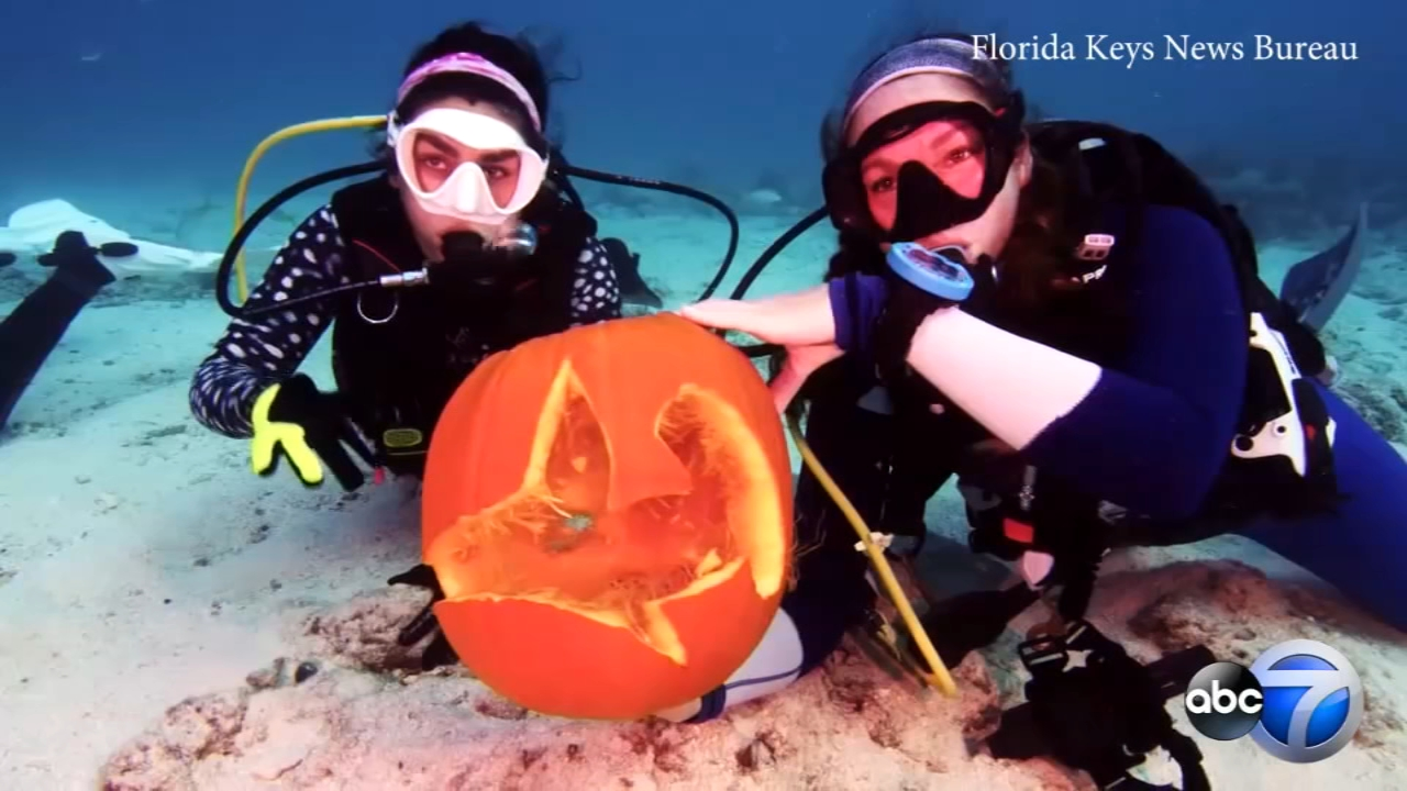 A team of scuba divers competed in the annual Underwater Pumpkin Carving contest in the waters off Key Largo, Florida.